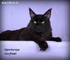 Giperboreya Glorfindel