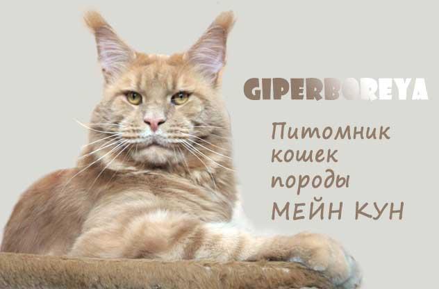 giperboreya